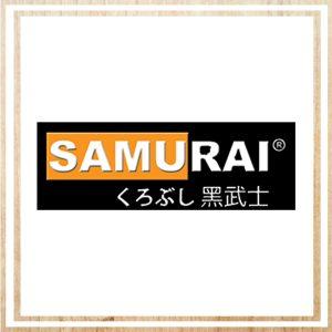 Samurai Paint